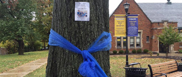 Blue ribbon tied on a tree near the southeast door of OJH